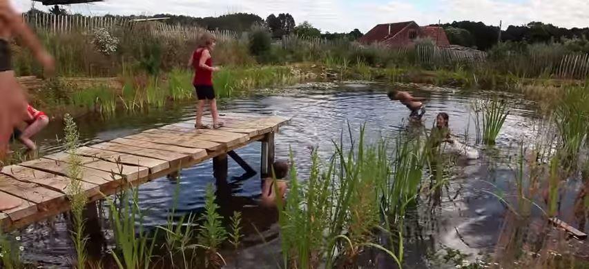 Prírodný bazén: Lepší pre rodinu, záhradu, aj vašu peňaženku